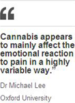 Cannabis quote
